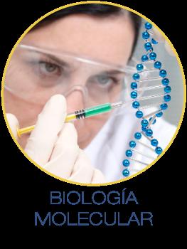 bioMolecular