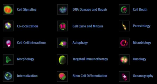 citometria-de-flujo-1